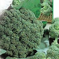Семена капусты Броколи Колобрайзе  1 кг , Польша