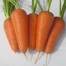 Семена моркови Аленка 1 кг , Украина