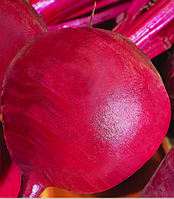 Семена столовой свеклы Красный шар 1 кг , Польша