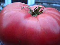 Семена томата розовые щёчки 1 кг , Польша