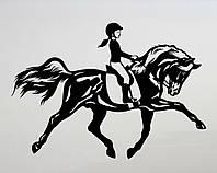 Виниловая наклейка - Конный спорт