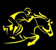 Виниловая наклейка - Конный спорт 2