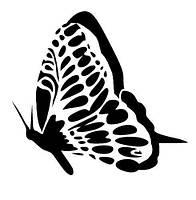 Виниловая наклейка- Бабочка 34