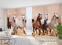 "Фото Шторы в зал Табун лошадей"" 2,7м*4,0м (2 половинки по 2,0м), тесьма"