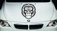 Виниловая наклейка на авто - на капот(обезьяна)