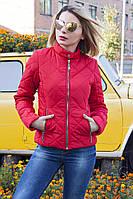 Куртка женская демисезонная №33 ромб (5 цветов), короткая демисезонная куртка, фото 1