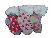 Носки детские для девочек оптом Mr Pamut  0/12-24 лет.№ MP7101
