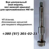Вал водила, центральный вал для кремовзбивалки МВ-60