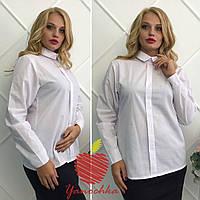 Блуза батал,Ткань: коттон Обманка(без пуговиц спереди),застежка сзади Цвет: белый яс №545