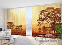 """Фото Шторы в зал """"Танзания"""" 2,7м*5,0м (2 полотна по 2,5м), тесьма"""