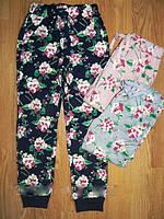 Спортивные брюки утепленные  для девочек Glo-Story 98-104-110-116-122-128 рр