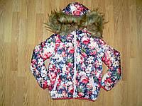 Куртки  на девочек  оптом, F&D , 6-16 рр., фото 1