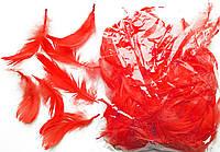 Перья красные для декорирования (120 шт, 5-10 см)