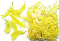 Перья желтые для декорирования (120 шт, 5-10 см)