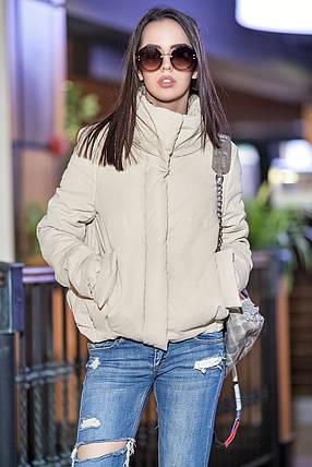 Женская осенняя короткая куртка с воротником стойкой, фото 2