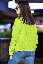 Женская осенняя короткая куртка с воротником стойкой, фото 3