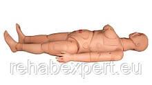 Учебный Манекен HUG / H300S - Training Manikin  Это продвинутый фантом для медицинской и сестринской помощи (д
