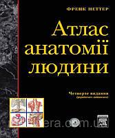 Неттер Атлас анатомії людини (4-е видання)