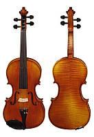 Скрипка Hora V-100 (1/10)