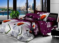 Двуспальный набор постельного белья 180*220 Полиэстер №157