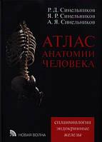 """Синельников Р. Д., Синельников Я. Р., Синельников А. Я. """"Атлас анатомии человека"""" в 4-х томах  Том 3"""