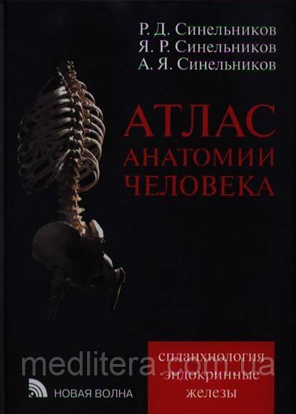 Архив: атлас анатомии синельников 2 том: 300 грн. Книги.