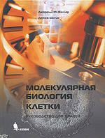 Фаллер Дж.М., Шилдс Д. Молекулярная биология клетки