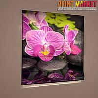 Фотошторы римские фиолетовая орхидея на камне