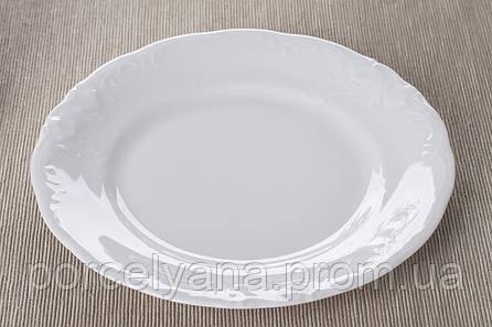 Тарелка обеденная 240мм Fryderyka