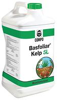 Басфоліар Келп СЛ- мінеральне добриво з ефектом стимулятора росту на основі фітогормонів