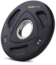 Набор олимпийских блинов SmartGym 80 кг, фото 2