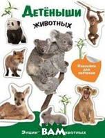 Энциклопедия животных с наклейками. Детеныши животных