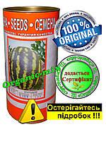 Арбуз Холодок (Russia), поздний, проф. семена 500 грамм банка, обработанные Metalaxyl-M