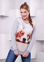 Свитшот с собакой женский серый