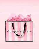 Подарочный Пакет VICTORIA'S SECRET (бол)