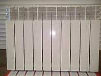 Алюминиевый радиатор RADAL 100*500, фото 1