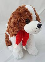 Собака собачька упаковка для подарка стильная красивая мягкая приятная на ощюпь подарочьная упаковка