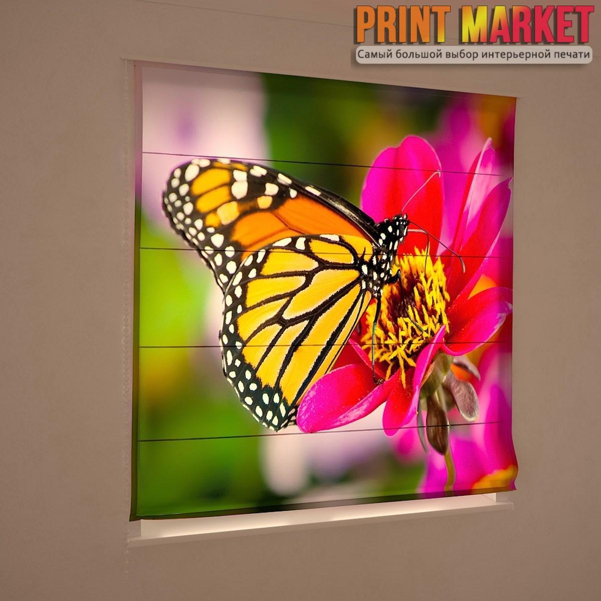 Фотошторы римские большая бабочка на цветке