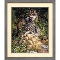 """91416 • Набор для рисования красками по номерам """"Дикие и свободные волки"""" • """"Wild and Free Wolves"""" Dimensions Paint Works"""