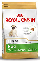 АКЦИЯ! Royal Canin PUG JUNIOR  УПАКОВКА 1,5 кг + 2 КОНСЕРВЫ ROYAL CANIN JUNIOR В ПОДАРОК!