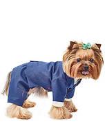 Костюм - тройка Pet Fashion «Джованни» 23-26см XS  для собак