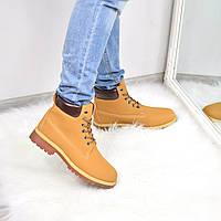 Ботинки женские Timber коричневые 3671, ботинки женские
