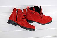 Женские замшевые ботинки на молнии на каблуке красного цвета