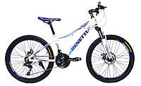 Велосипед 24'' Benetti FORTE (AL)