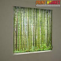 Фотошторы римские бамбуковый лес
