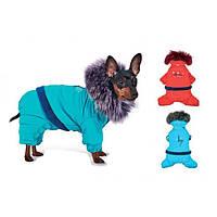 Костюм  Pet Fashion Макс S для собак