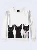 Свитшот Три кота