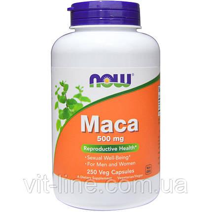 Now Foods Мака 500 мг 250 вегетарианских капсул, фото 2