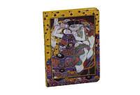 Блокнот Art Collection А5 с карманом, клетка, 90 листов, кремовая бумага Ladies