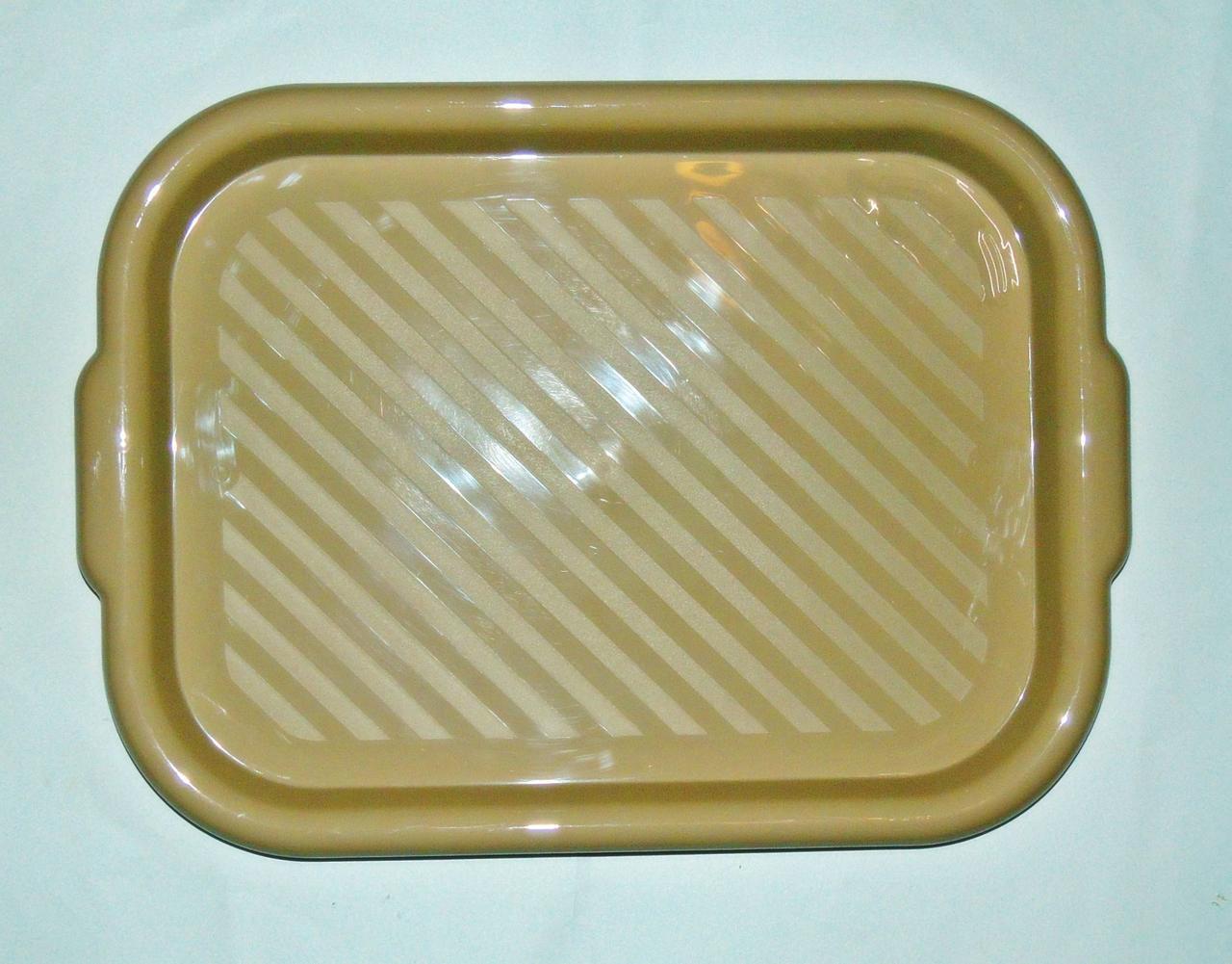 Пластиковий піднос «ММ-ПЛАСТ» 45х32